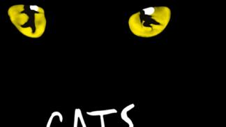 Ronacher Wien - CATS Musical erleben - Bild: Oeticket